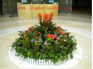 公司大厅花坛